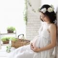 g-maternity018